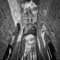 Abbaye Hambye (2) - Photo of Saint-Denis-le-Gast
