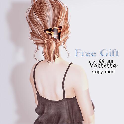 Free Gift @ Hair Fair 2017