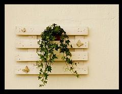 Piccole cose belle...  #francavillaalmare #DIY