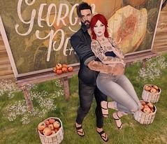 peach season..