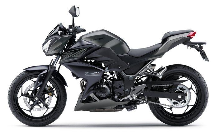 Kawasaki Z 300 2016 - 11