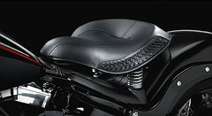 Harley-Davidson FLSTSB 1584 SOFTAIL CROSS BONES 2008 - 24