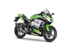 Kawasaki Ninja 300 Performance 2015 - 0