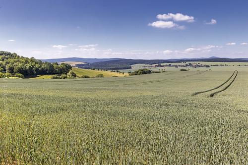 2017 blauerhimmel canoneos6d deutschland germany getreidefeld juni landscape landschaft möhra sommer tamron2470mmf28divcusdthüringen
