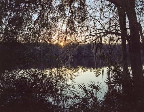 120 120film analog florida pentax6x7 mediumformat analogphotograph filmcamera film mechanicalcamera vintage vintagecamera 75mm f45 oldtown dixiecounty riverfront cabin airbnb getaway retreat suwannee suwanneeriver spanishmoss sunrise suwanneeriverretreat riverview waterview dawn river waterfront