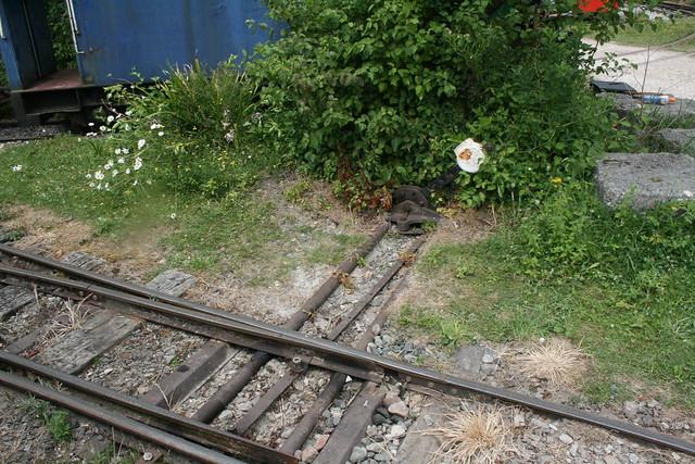 Point lever near Brockham station