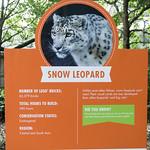 zoo lego-11