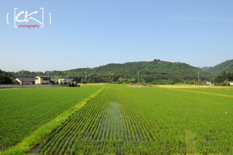 Japan_1245