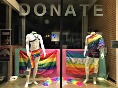 Lifelong Thrift Store Display Window, Seattle Pride 2017