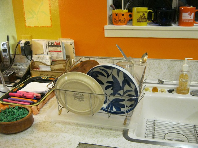 Dishes-2039, Canon POWERSHOT A490