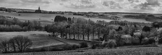 Condroz Landscape II