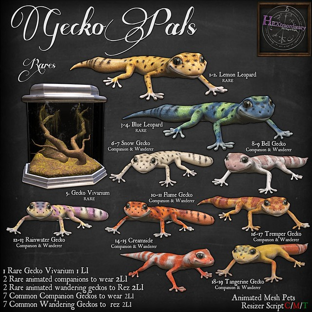 HEXtraordinary Gecko Pals Gacha Key