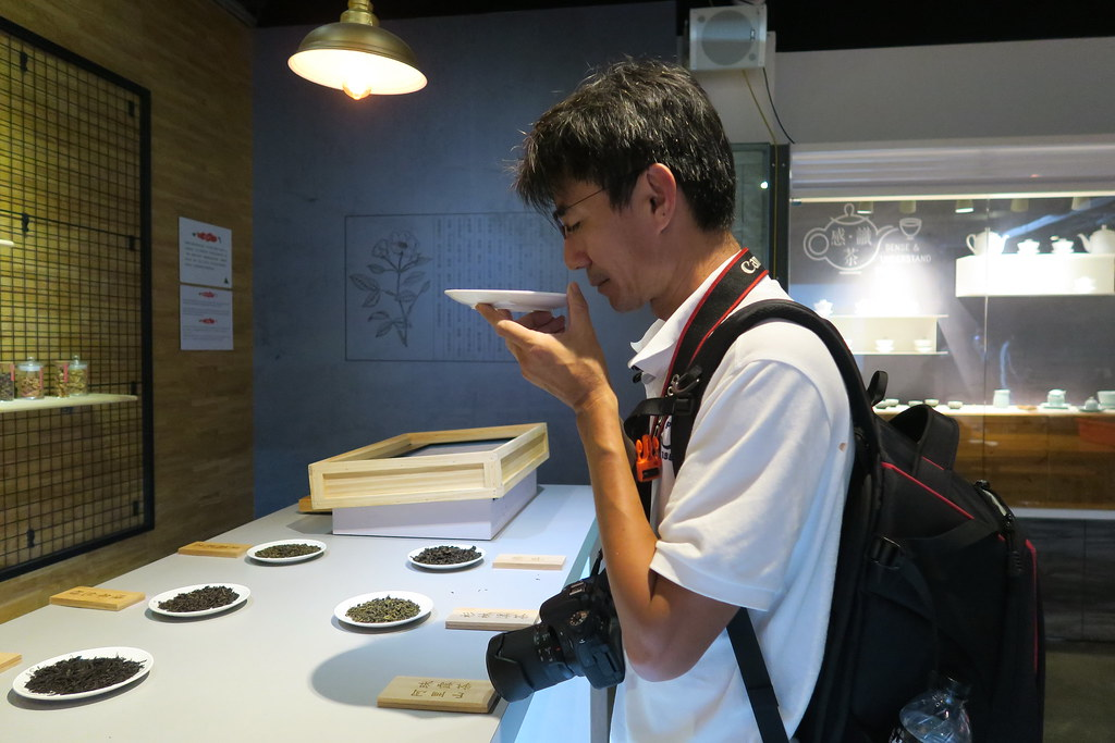 坪林茶葉博物館 (9)