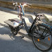 An affectionate bike