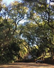 Engenho Central, Piracicaba, SP, Brasil