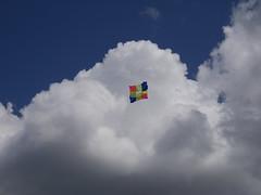 Streatham Common Kite Day