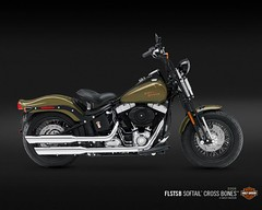 Harley-Davidson FLSTSB 1584 SOFTAIL CROSS BONES 2008 - 7