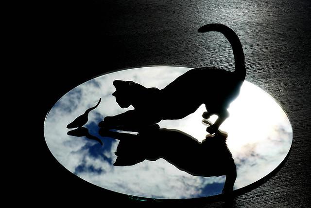 Silhouette cat & mouse, Panasonic DMC-TZ100