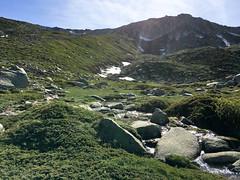 Corse Juin 2017_ (69 sur 99)