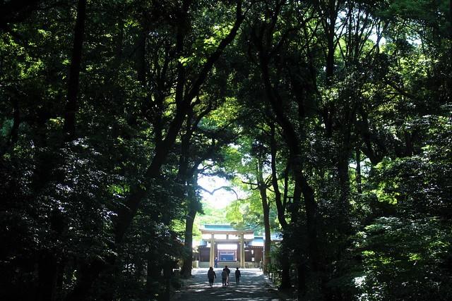 meijijingu105