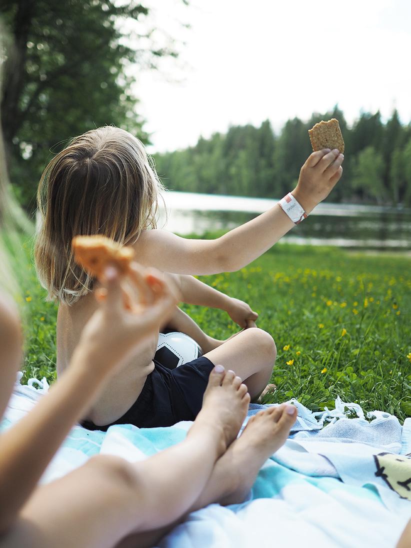 piknik4