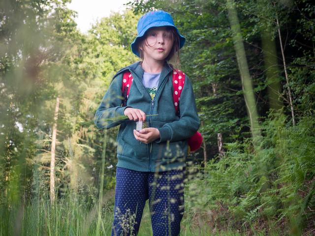 Exploring woods Sussex