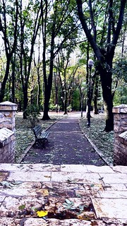 Central park in Iasi