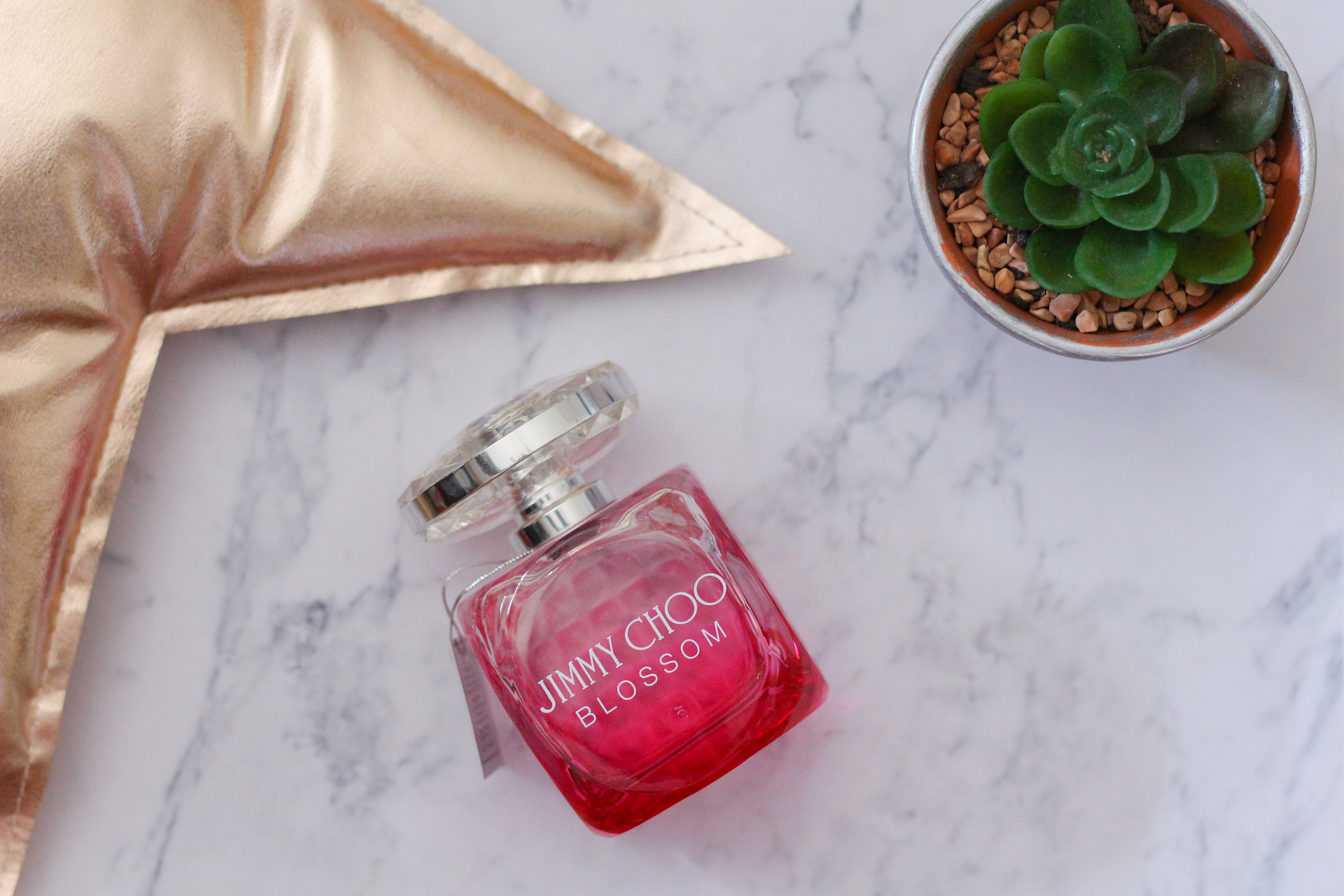 parfume jimmy choo blossom
