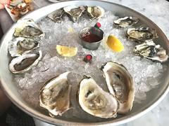 """""""S/He was a very valiant wo/man who first adventured on eating of oysters."""" ―James VI & I 🐚"""