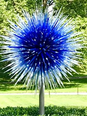 Dale Chihuly sculpture at New York Botanical Garden