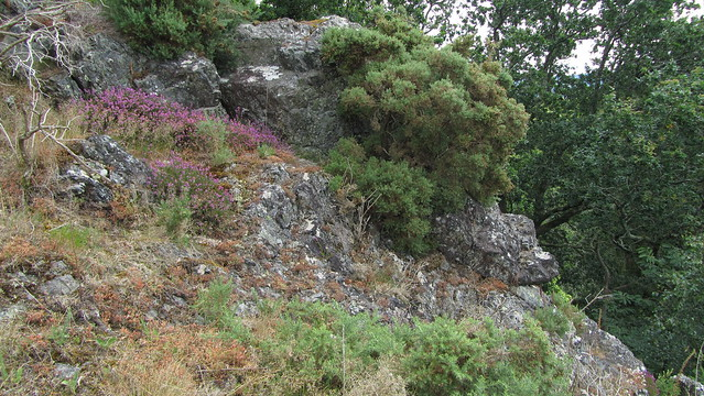 Hyner Rocks Upper Outcrop
