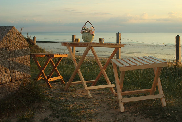 Evening Picnic at the Beach in Pallet Wood