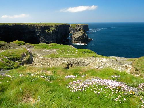 ireland éire eire coast sea wildatlanticway cliffs