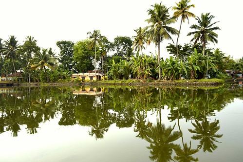 landscape scenery nature boat backwater