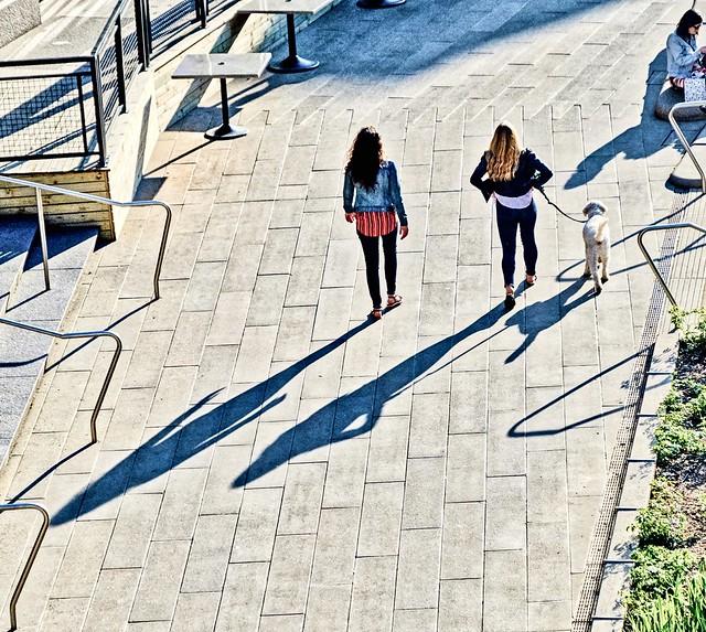 Shadows along Chicago's riverwalk.