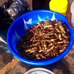 Openfire grilled grasshoppers, Ushafa Bridge, Ushafa Village, Abuja, Nigeria, #JujuFilms