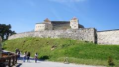מבצר רשנוב