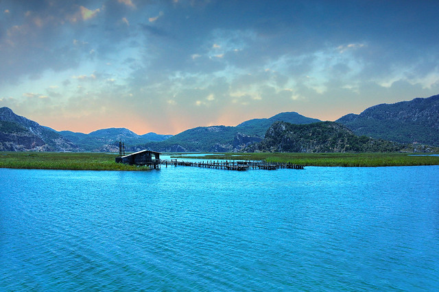 Dalyan (Kiddle)