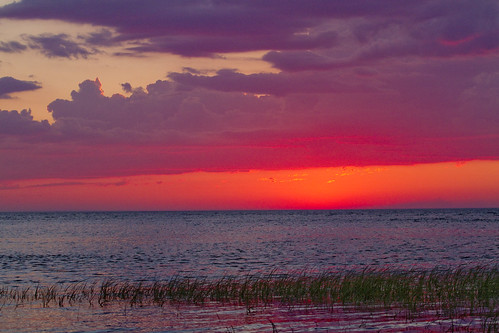 sky sea ocean bay clouds cloudscape seascape landscape watery marsh saltmarsh grass red wet reflection ripples rippling sunset weather cove blue water glow afterglow twilight light lighting