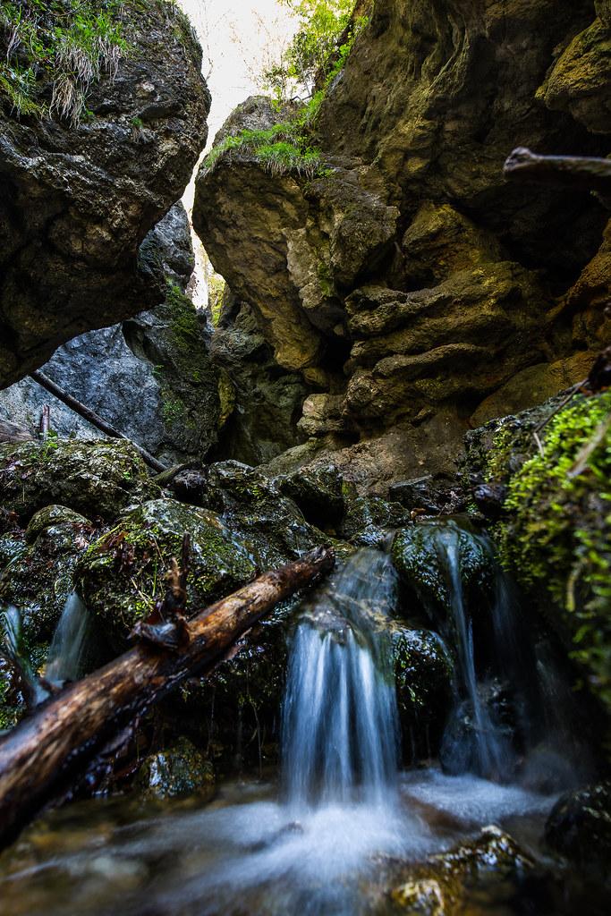 Stream under Schneeberg