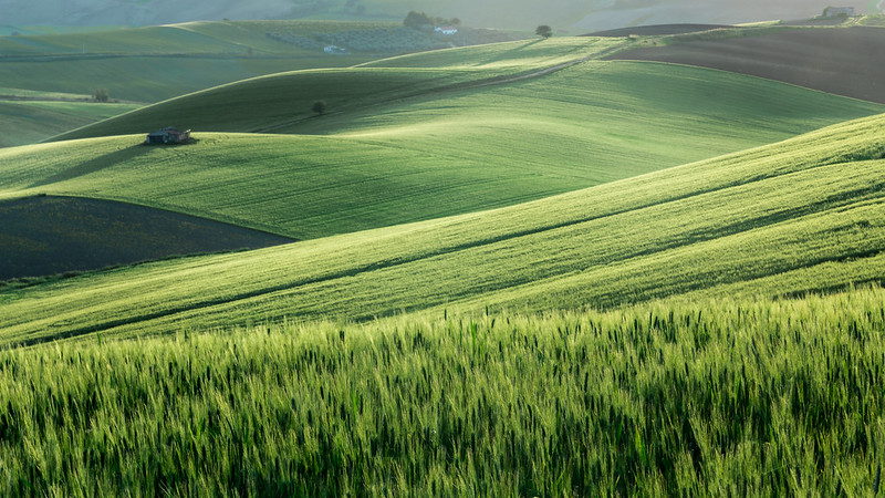 Agriculture - Photo credit: SDB79 via Foter.com / CC BY-NC-SA
