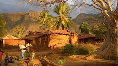 Туризм в Танзании стал самым быстрорастущим сектором в Африке