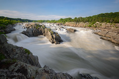Casey-Herd-8515 - Great Falls, USA