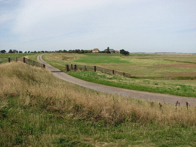 Kings Hill Farm, Isle of Sheppey