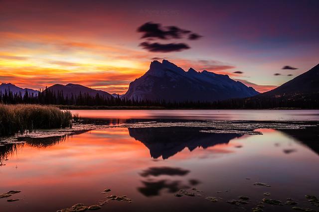 Mount Rundle Glorious Sunrise