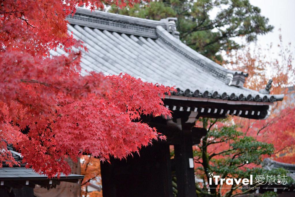 京都赏枫景点 永观堂 (64)