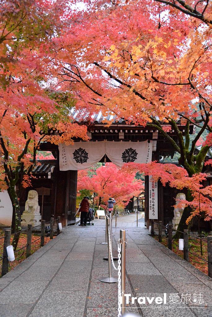 京都赏枫景点 永观堂 (70)