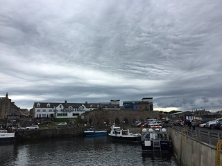 2017-07-09 Seahouses .48.08