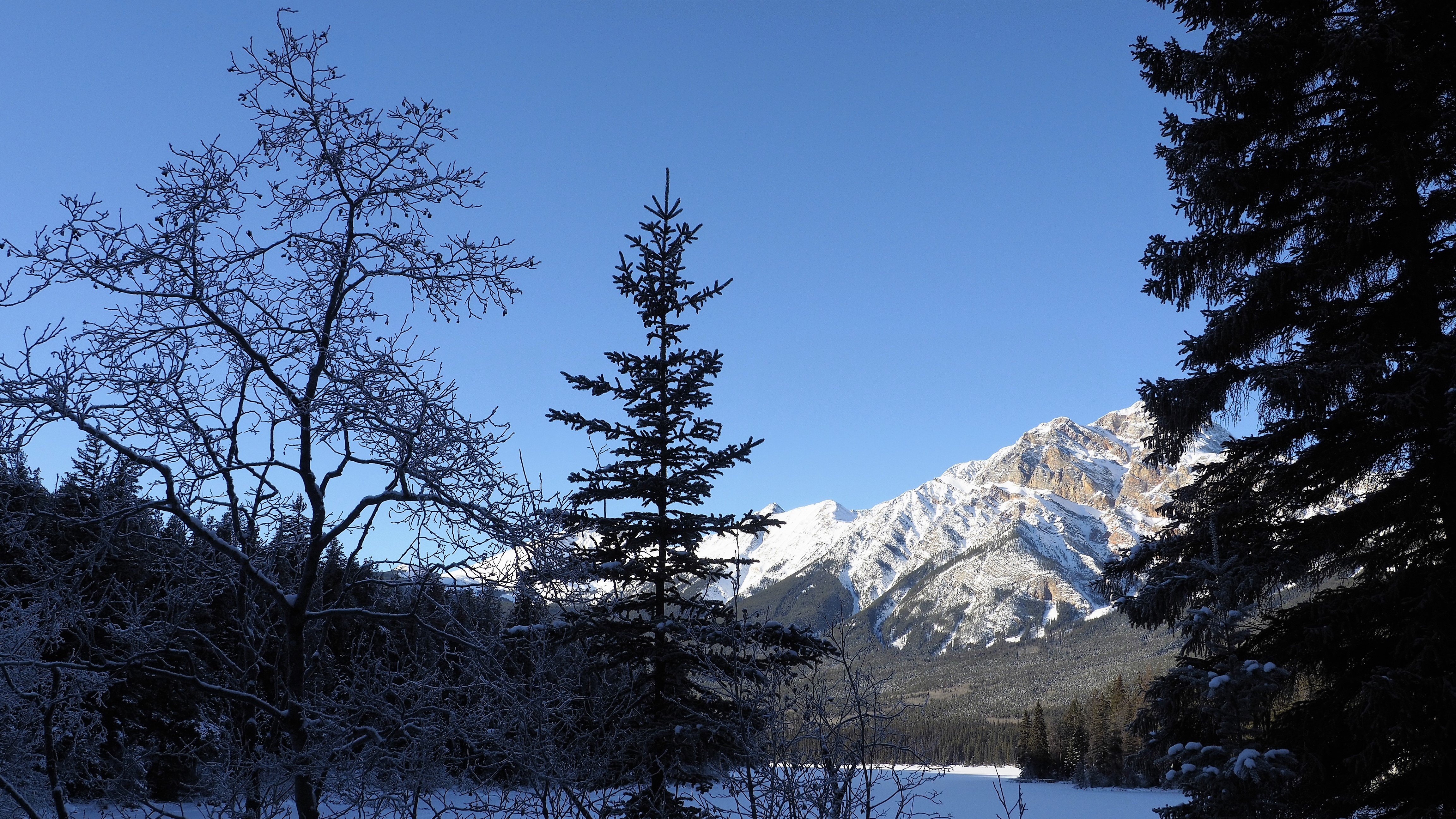 Canadian_Rockies_5