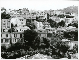 Houses perched on hillside, Wellington
